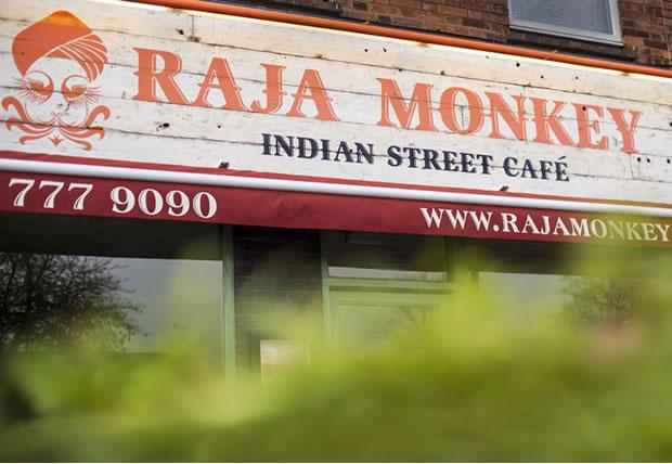 raja-monkey-big