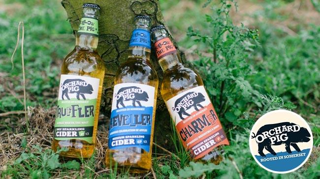 orchard pig cider