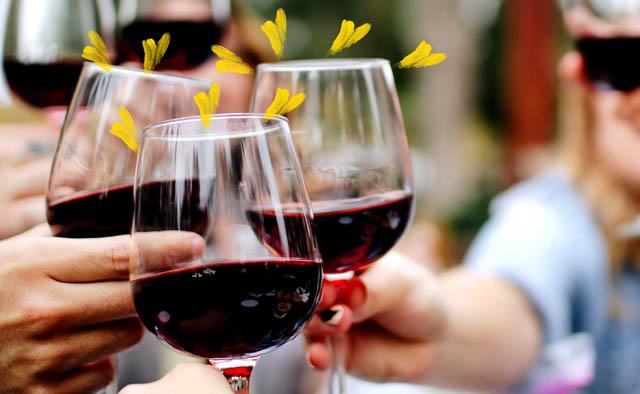 wine tasting at home