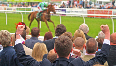 horse racing in liverpool stag party activity 1