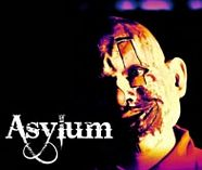 asylum stag activity image