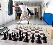 chess boxing stag activity image