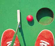 crazy golf stag activity image