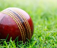 cricket for your group stag party