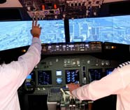 flight simulator stag activity image