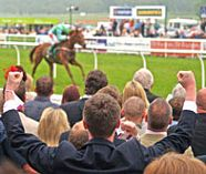 horse racing for your stag party