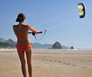 power kites action stag activity image