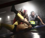 wrestling school stag activity image