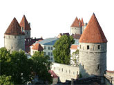 Tallinn stag do image