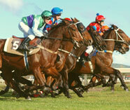 horse racing ideas